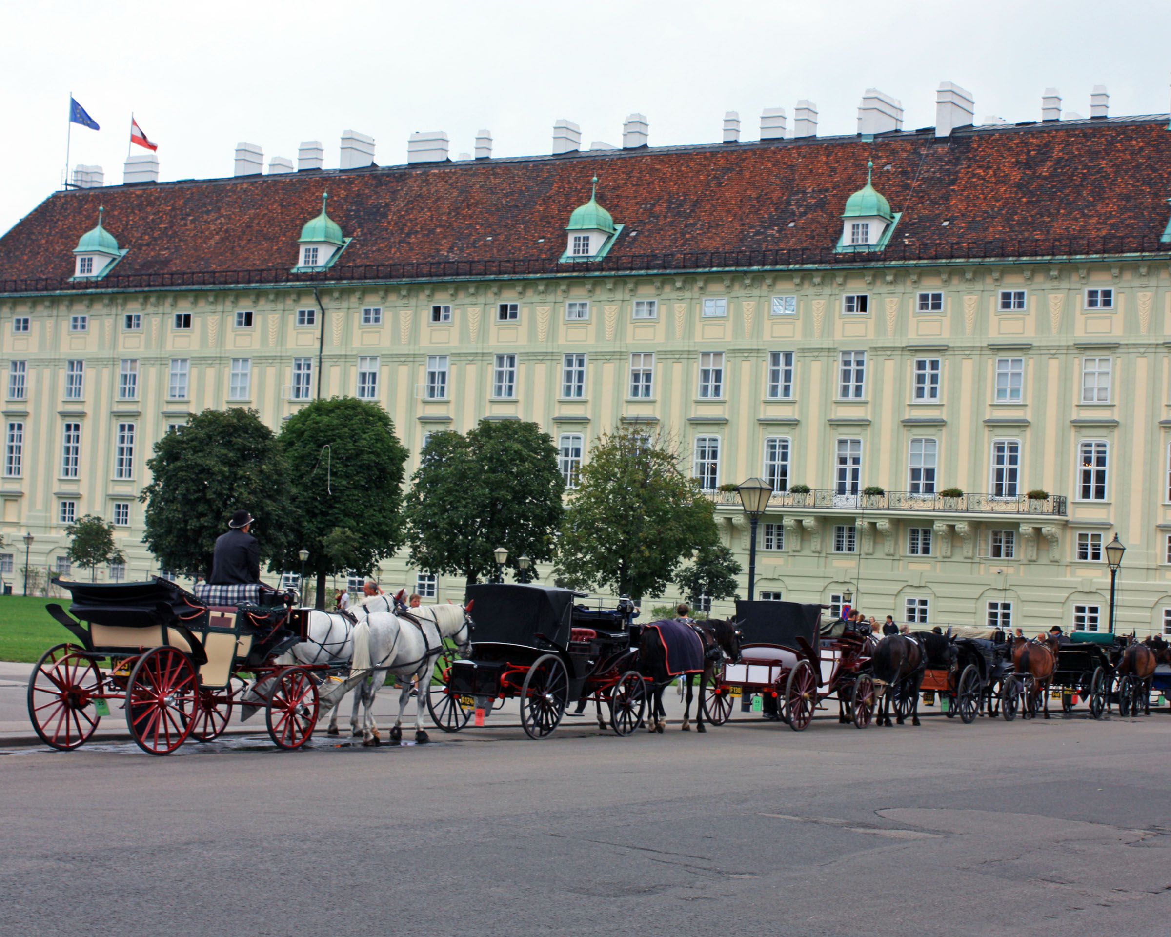 Horse-drawn carraiges line up outside of Hofburg Palace.